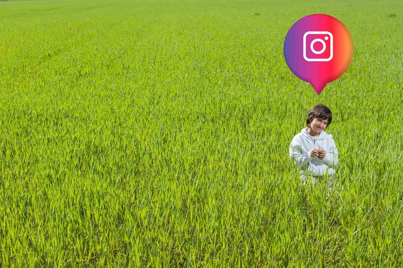 seguidores-instagram-gratis